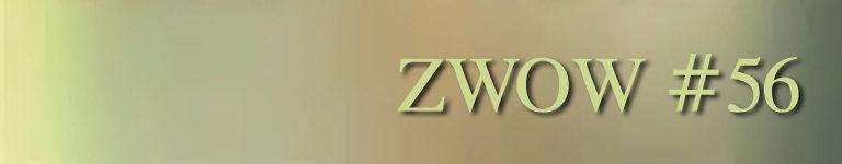 ZWOW #56 – 8 minute power cardio interval training