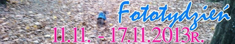 Fototydzień 11.11. – 17.11.2013r.