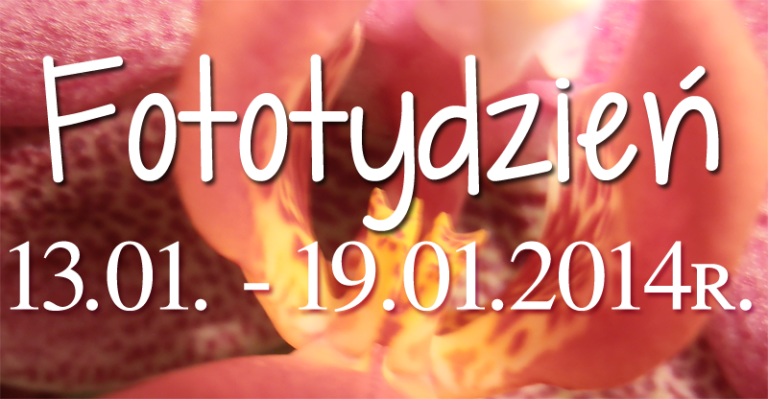 Fototydzień 13.01. – 19.01.2014r.