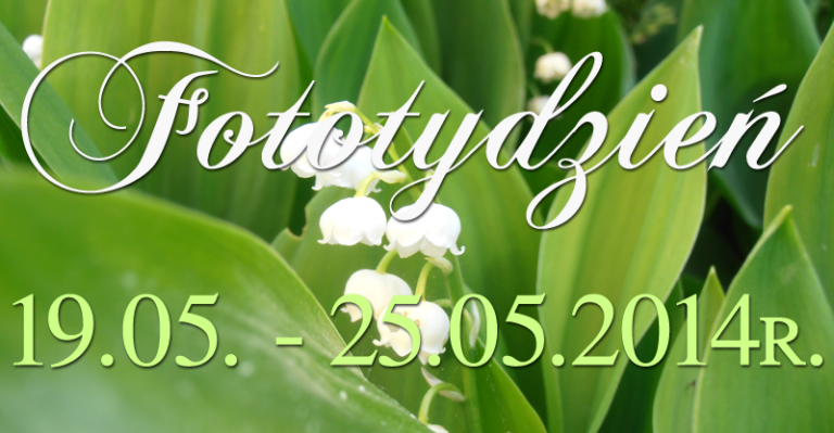 Fototydzień 19.05. – 25.05.2014r.