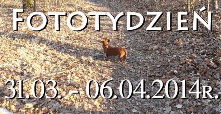 Fototydzień 31.03. – 06.04.2014r.