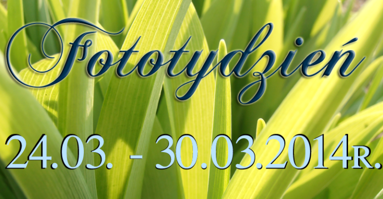 Fototydzień 24.03. – 30.03.2014r.