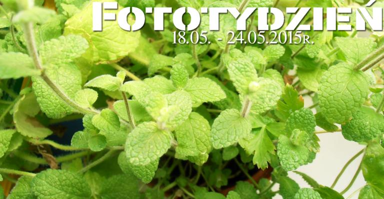 Fototydzień 18.05. – 24.05.2015r.