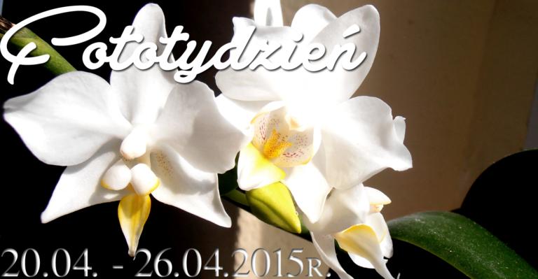 Fototydzień 20.04. – 26.04.2015r.
